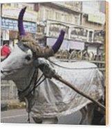 Cow Pulling Cart Wood Print