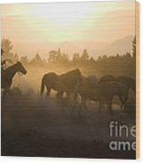 Cowboy Chasing Horses Wood Print
