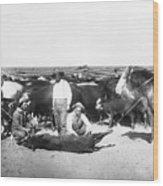 Cowboys Branding Cattle C. 1900 Wood Print