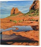 Cowpie 07-103 Wood Print
