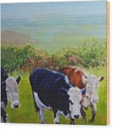 Cows And English Landscape Wood Print