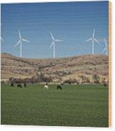 Cows And Windmills Wood Print