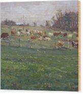 Cows In A Farm, Georgetown  Wood Print