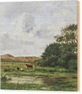 Cows In A Meadow Wood Print