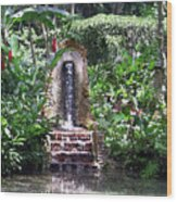 Coyaba Garden Ornamental Fountain Wood Print