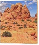 Coyote Buttes Pastel Landscape Wood Print