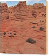 Coyote Buttes Pink Landscape Wood Print
