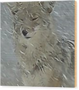 Coyote In Winter Wood Print