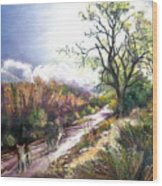 Coyotes In Placerita Canyon Wood Print