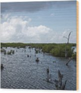 Ominous Clouds Over A Cozumel Mexico Swamp  Wood Print