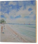 Cozumel Mexico Wood Print