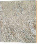 Crab Dugout Abstract Wood Print