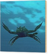 Crab Swimming In The Blue Water Wood Print