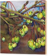 Crabapple Dew Wood Print