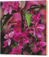 Crabapple Tree Blossoms Wood Print