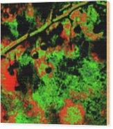 Crabapples Series #4 24 Wood Print