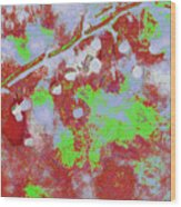 Crabapples Series #4 25 Wood Print