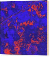 Crabapples Series #4 32 Wood Print