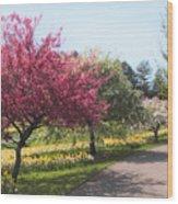 Crabtree Allee II Wood Print
