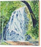 Crabtree Falls - Phantom Of The Blue Ridge Wood Print