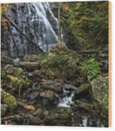 Crabtree Falls In Autumn Wood Print