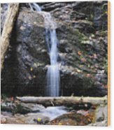 Crabtree Falls In Fall Wood Print
