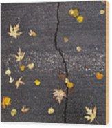 Crack 2 Wood Print