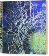 Crack Wood Print
