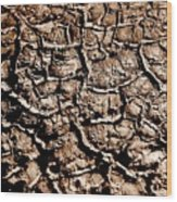 Cracked Earth Wood Print