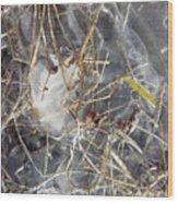 Crackling Ice II Wood Print