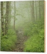 Craggy Gardens Trail Wood Print
