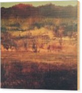 Cranberry Fields In November Wood Print