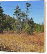 Cranberry Glades Wood Print
