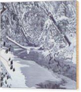 Cranberry River Winter Heavy Snow Wood Print