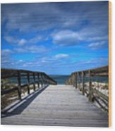 Crane Beach Wood Print