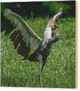 Crane On A Mission Wood Print
