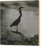 Crane Reflections Wood Print