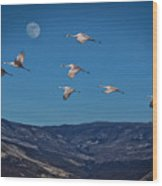 Cranes Across Colorado Blue Wood Print