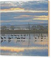 Cranes At Dawn 1 Wood Print