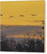 Cranes In The Sunrise Wood Print