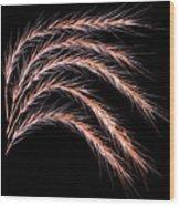 Grass Curve Wood Print