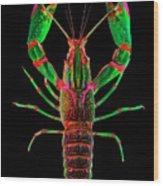 Crawfish In The Dark - Greenred Wood Print