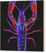 Crawfish In The Dark-  Redblue Wood Print