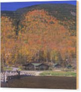 Crawford Notch Willey House Wood Print
