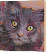 Crazy Cat Black Kitty Wood Print