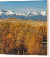 Crazy Mountain Creek Wood Print