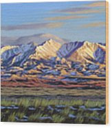 Crazy Mountains-Morning Wood Print