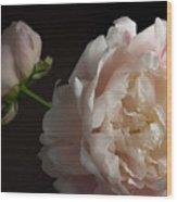 Cream And Pink Wood Print