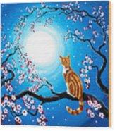 Creamsicle Kitten In Blue Moonlight Wood Print