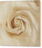 Creamy Rose Wood Print